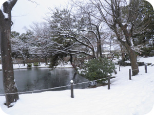 20111227_3